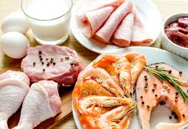 протеин protein